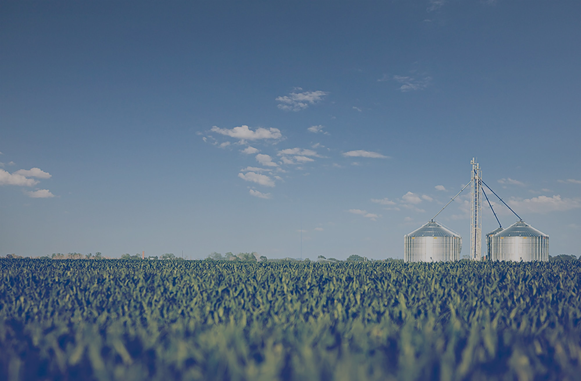 Two silos in the middle of a field.