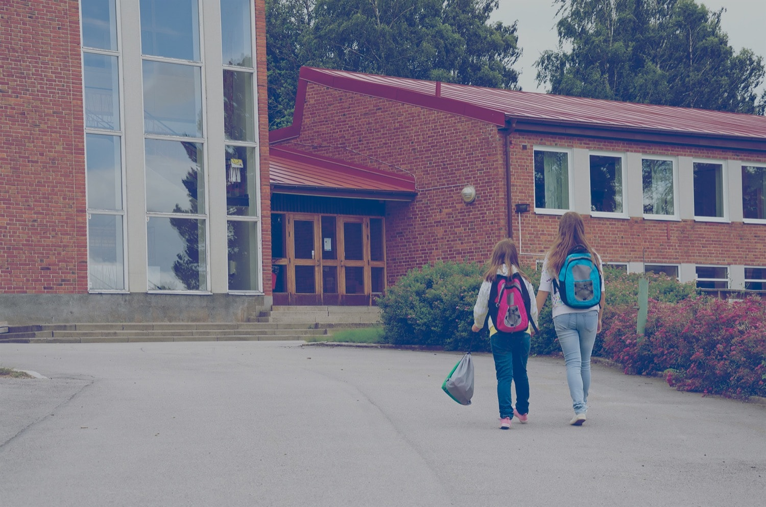 Two students walking up a road leading to a public library.