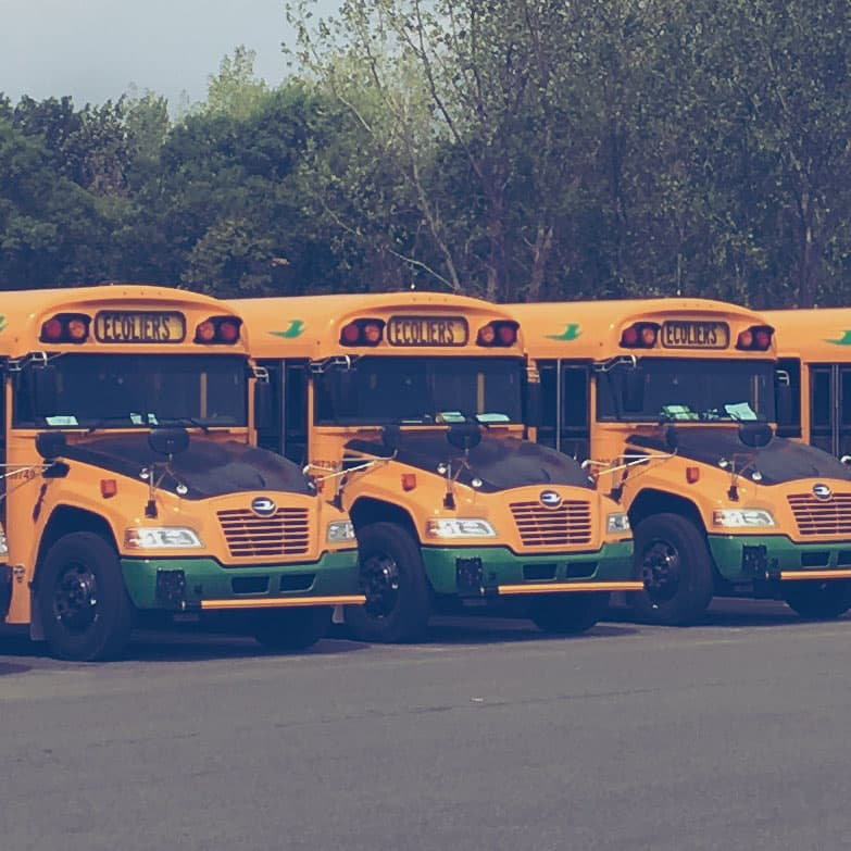 Yellow school buses parked beside each other.