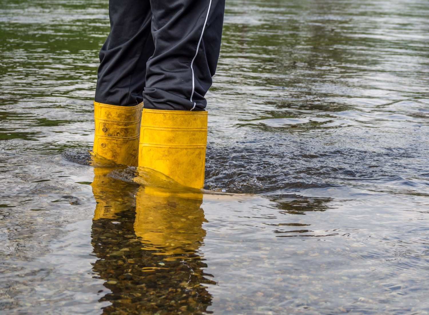 Man wearing yellow boots standing in ankle-deep water.